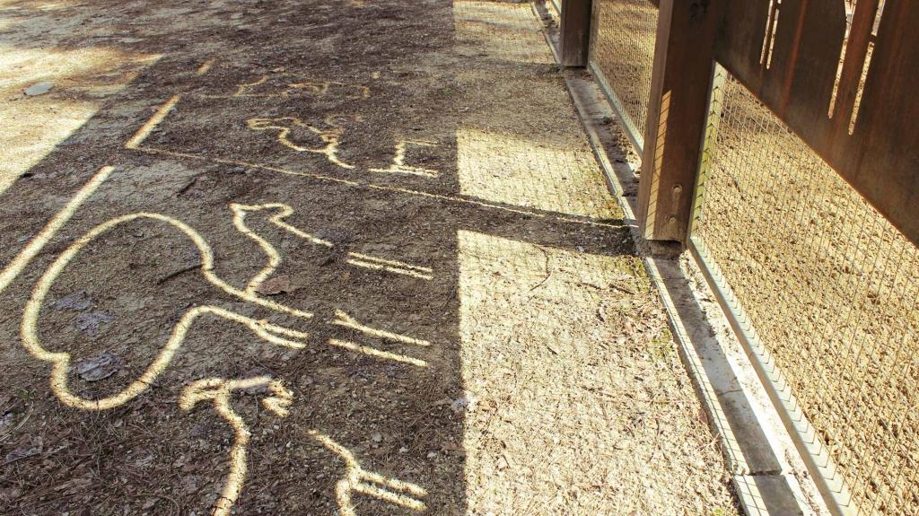segnaletica parco naturale di cervia